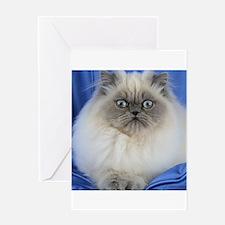 Cute Funny Himalayan Cat Greeting Cards