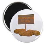 Peanut Allergy Magnets