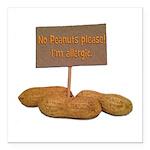 Peanut Allergy Square Car Magnet 3