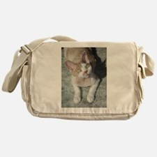 devon rex cute Messenger Bag