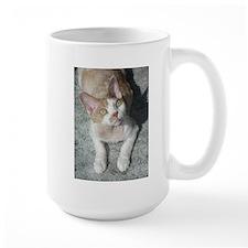 devon rex cute Mugs