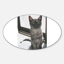 egyptian mau sitting Decal