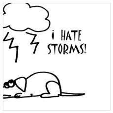 Funny Dog Afraid of Storms Poster