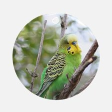 Budgie Round Ornament