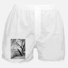 Bench Peacock Boxer Shorts