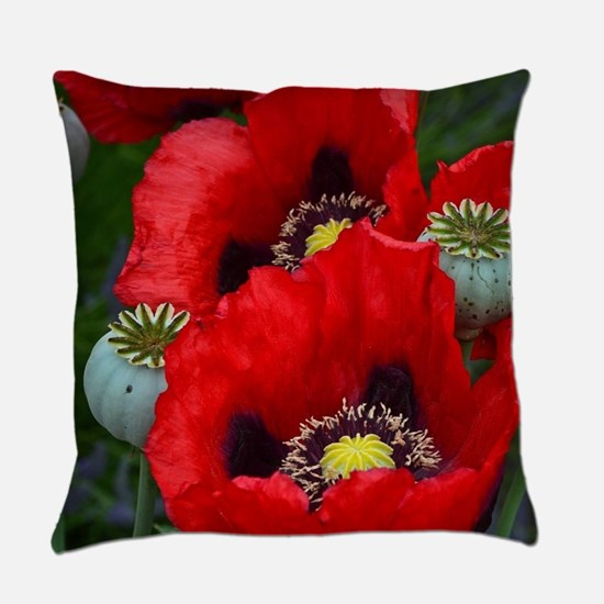 Red poppy flowers Everyday Pillow