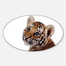 baby tiger Decal