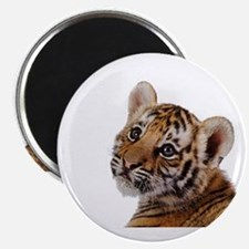 baby tiger Magnets