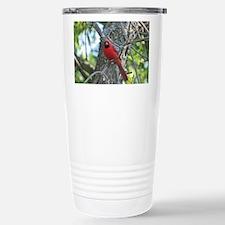 Male Cardinal Travel Mug