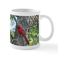 Male Cardinal Mugs