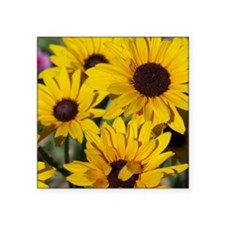 "Sunflowers Square Sticker 3"" x 3"""