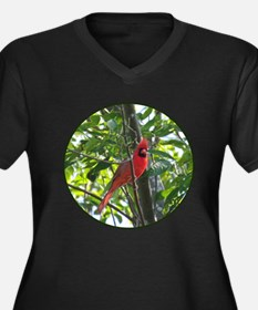 Male Cardinal Plus Size T-Shirt