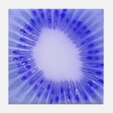 Blue Kiwi Art Tile