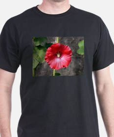 Red hollyhock flower in bloom T-Shirt
