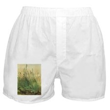 Large Piece of Turf by Albrecht Durer Boxer Shorts