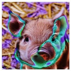 funky Piglet Poster