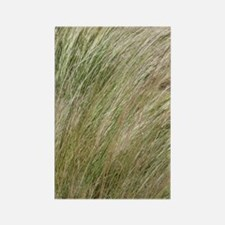 Prairie Grass Rectangle Magnet