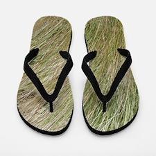 Prairie Grass Flip Flops