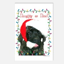 Naughty or Nice? Postcards (Package of 8)