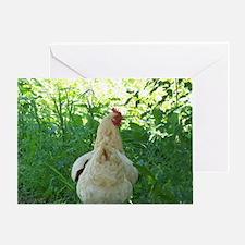 Chicken Butt Greeting Card