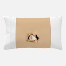 Tater Pillow Case