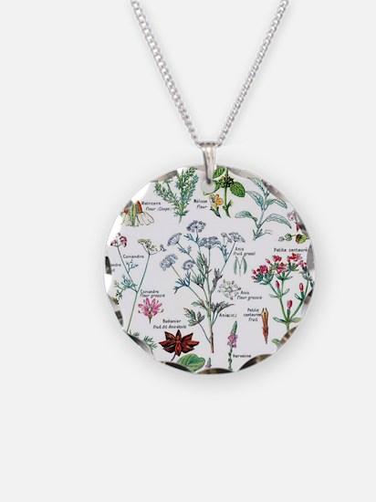 Botanical Illustrations - La Necklace