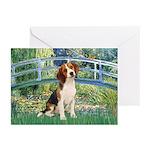 Bridge & Beagle Greeting Cards (Pk of 20)