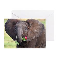 BABY ELEPHANT , LOVE Greeting Card