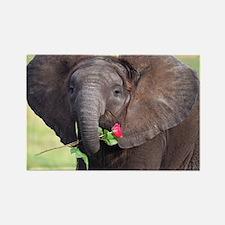 BABY ELEPHANT , LOVE Rectangle Magnet