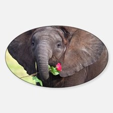 BABY ELEPHANT , LOVE Sticker (Oval)