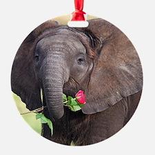 BABY ELEPHANT , LOVE Ornament