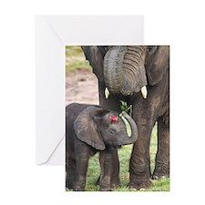 ROMANCE ELEPHANT Greeting Card