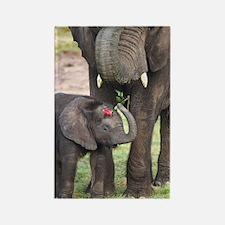 ROMANCE ELEPHANT Rectangle Magnet