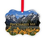 Grand teton national park Picture Frame Ornaments