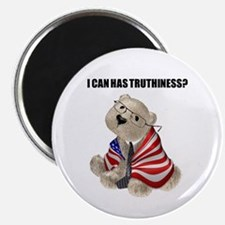 Truthiness Bear Magnet
