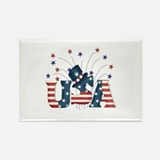 USA Fireworks Rectangle Magnet