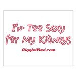 Too Funny Kidneys Small Poster