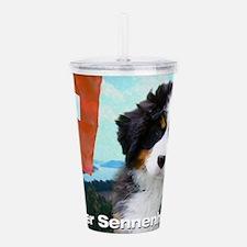 Berner Sennenhunde Acrylic Double-wall Tumbler