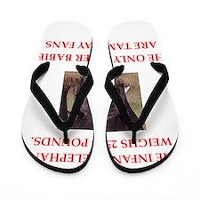 tampa bay Flip Flops
