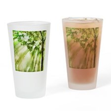 Afternoon Forest Drinking Glass