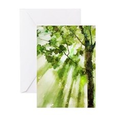 Afternoon Forest Greeting Cards