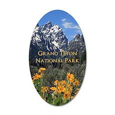 Grand Teton National Park Ph Wall Decal