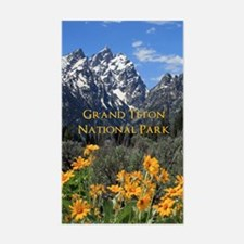 Grand Teton National Park Phot Decal