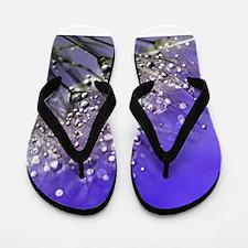 Dandelion_2015_0705 Flip Flops