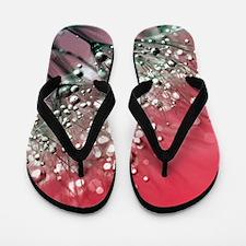 Dandelion_2015_0710 Flip Flops