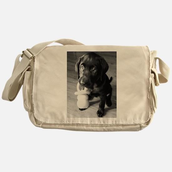 Pacifier Puppy B&W Messenger Bag