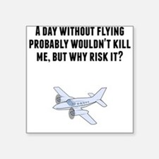 A Day Without Flying Sticker