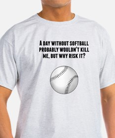 A Day Without Softball T-Shirt