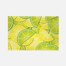 Lemon Lime Rectangle Magnet