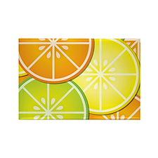 Citrus Fruit Rectangle Magnet